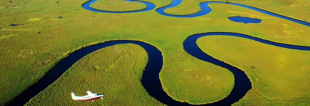 botswana safari See You in Africa