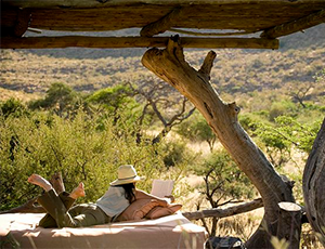 Relaxing in the Kalahari